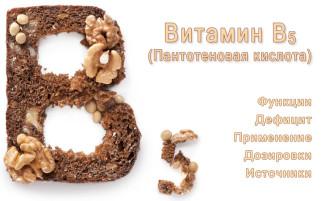 Витамин B5 (Пантотеновая кислота). Функции, источники и применение пантотеновой кислоты